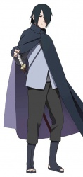 SasukeGaiden2.jpg