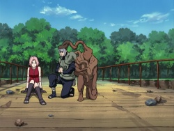 NarutoShippuuden41.jpg
